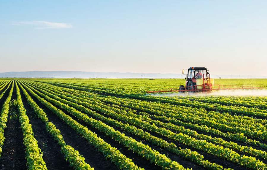 نیترات کلسیم در کشاورزی